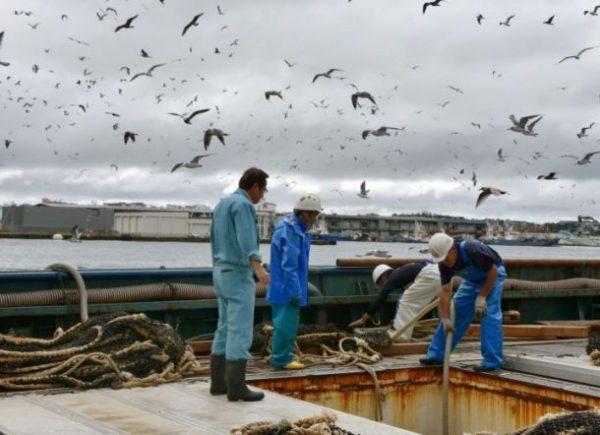 Cerita Motivasi Hidup Nelayan Jepang